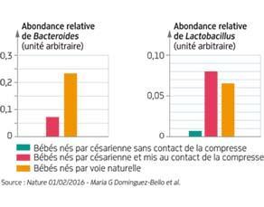 Comparaison de l'abondance des bactéries du microbiome intestinal du nouveau-né