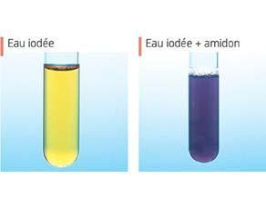 Détection d'amidon avec de l'eau iodée