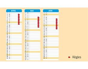 Le calendrier d'une jeune femme ayant un cycle régulier
