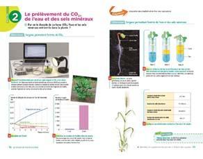 Le prélèvement du CO2, de l'eau et des sels minéraux, à l'échelle des organes