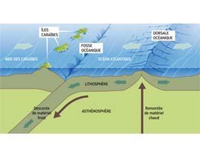 La relation entre la tectonique des plaques et la dissipation de l'énergie thermique interne de la Terre