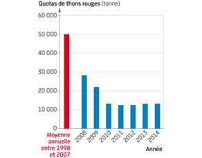 Quotas de pêche du thon rouge