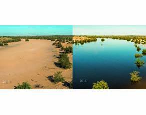 Aspect du sol au niveau du delta du Colorado en 2013 puis en 2014