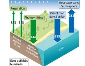 Flux annuels de CO2, sans activités humaines (en Gt)