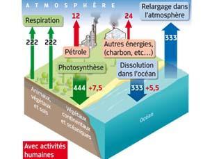 Flux annuels de CO2, avec activités humaines (en Gt)