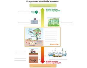 Écosystèmes et activités humaines - à compléter