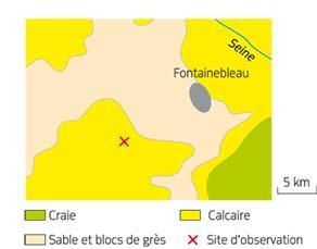 Carte géologique simplifiée et localisation d'un site d'observation de la forêt de Fontainebleau