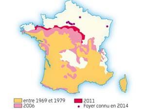 Progression de l'habitat de la chenille processionnaire du pin de 1979 à 2014 en France