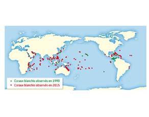 Évolution de la répartition du blanchiment des coraux entre 1990 et 2015
