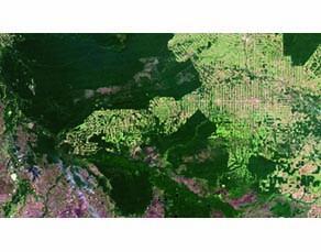 Image satellitaire de la forêt amazonienne, au sud du Brésil en 2012