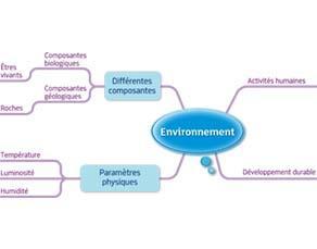 Environnement : acquis du cycle 3