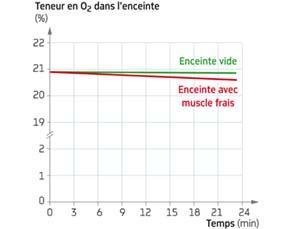 Teneur en dioxygène de l'air d'une enceinte hermétique contenant un muscle frais d'animal