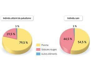 Composition du sang chez un individu sain et chez un individu infecté par le paludisme