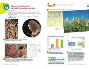 Micro-organismes et nutrition des plantes