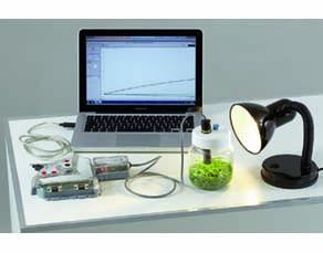 Dispositif expérimental pour savoir par quel organe le CO2 entre dans la plante