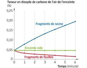 Teneur en dioxyde de carbone d'une enceinte contenant des fragments de végétaux (ExAO)
