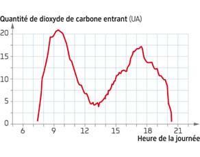 Évolution de l'entrée de dioxyde de carbone dans un végétal en fonction des heures de la journée