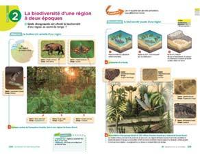 La biodiversité d'une région à deux époques