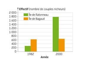 Évolution des effectifs de deux populations de goélands leucophées en France