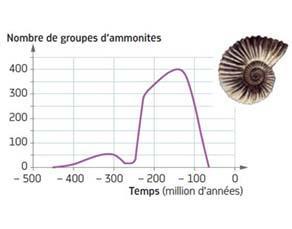 Évolution au sein du groupe marin des ammonites