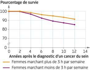 Sport et survie après diagnostic d'un cancer du sein