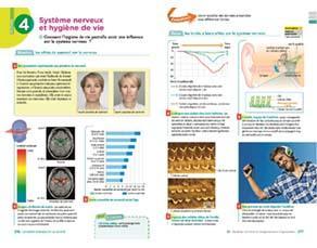Système nerveux et hygiène de vie