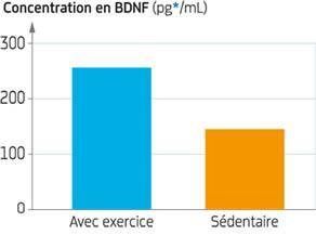 Teneur cérébrale en BDNF