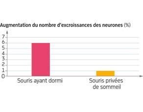 Mise en évidence de l'influence du sommeil sur l'apprentissage