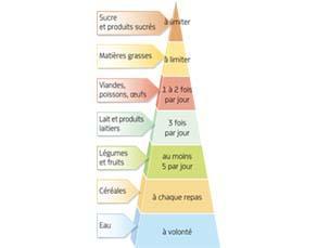 La pyramide alimentaire et les groupes d'aliments