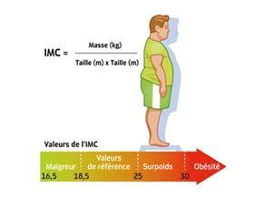 L'obésité, un excès quantitatif