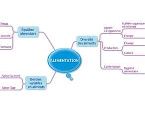 Alimentation : acquis du cycle 3