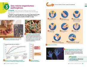 Des micro-organismes pathogènes
