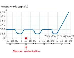 Variation de la température du corps de Romain pendant quelques jours