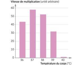 Vitesse de multiplication des bactéries pathogènes en fonction de la température corporelle de l'être humain