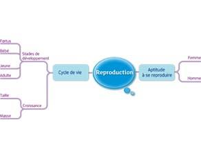 Reproduction : acquis du cycle 3