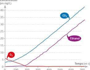 Évolution des concentrations de dioxygène, dioxyde de carbone et éthanol dans une enceinte contenant des levures au cours du temps