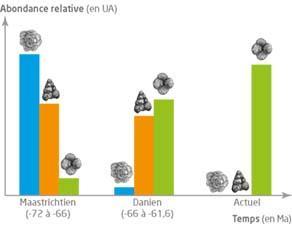 Évolution de l'abondance de trois groupes de foraminifères au cours du temps