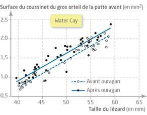Relation entre la taille du lézard et la surface du coussinet du gros orteil de la patte avant sur l'île de Water Cay