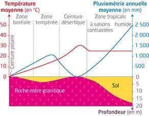 Effet du climat sur l'altération des roches