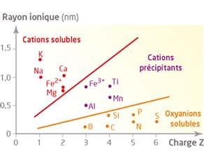 Les caractéristiques de quelques ions