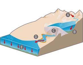 Conséquence de la construction d'un barrage