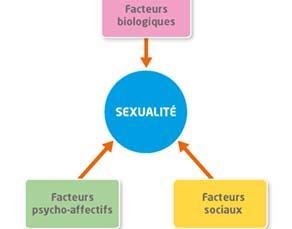 Les facteurs influençant la sexualité