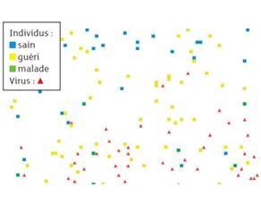 Résultat de la simulation de la propagation d'une épidémie au bout de plusieurs semaines