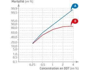 Influence d'un insecticide sur la mortalité des moustiques anophèles