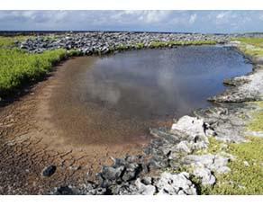 Étendue d'eau partiellement asséchée