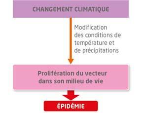 Changement climatique et épidémies