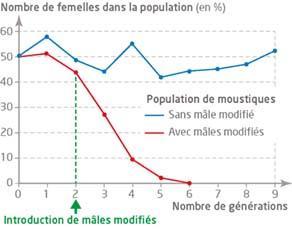 Évolution du nombre de femelles de deux populations d'anophèles