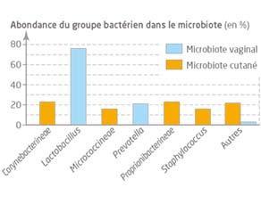 Comparaison de deux microbiotes maternels