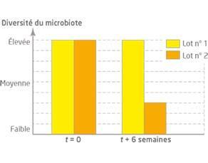 Influence de la richesse en fibres sur la diversité du microbiote intestinal