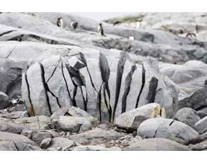 Une roche fissurée